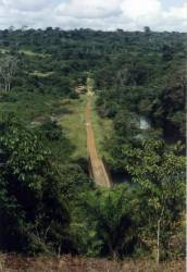 Countryside in N.W. Congo